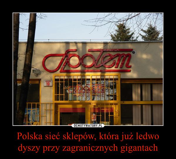 Polska sieć sklepów, która już ledwo dyszy przy zagranicznych gigantach –