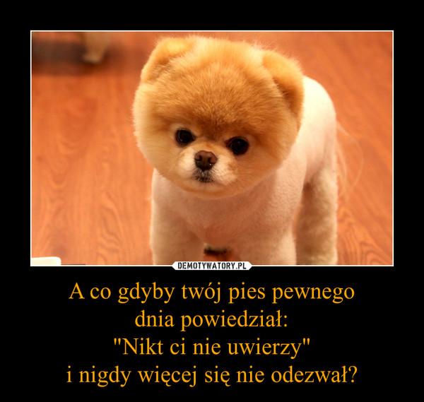 """A co gdyby twój pies pewnegodnia powiedział:""""Nikt ci nie uwierzy""""i nigdy więcej się nie odezwał? –"""