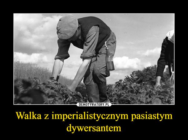 Walka z imperialistycznym pasiastym dywersantem –
