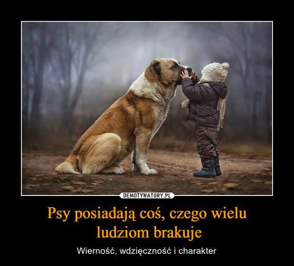 Psy posiadają coś, czego wielu ludziom brakuje – Wierność, wdzięczność i charakter