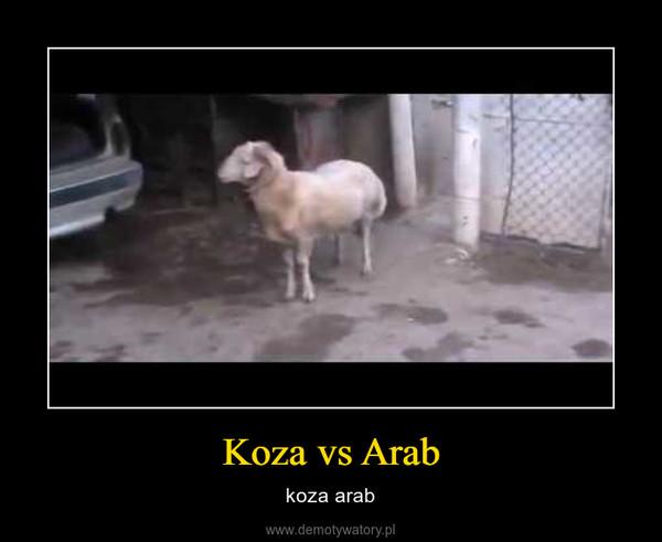 Koza vs Arab – koza arab