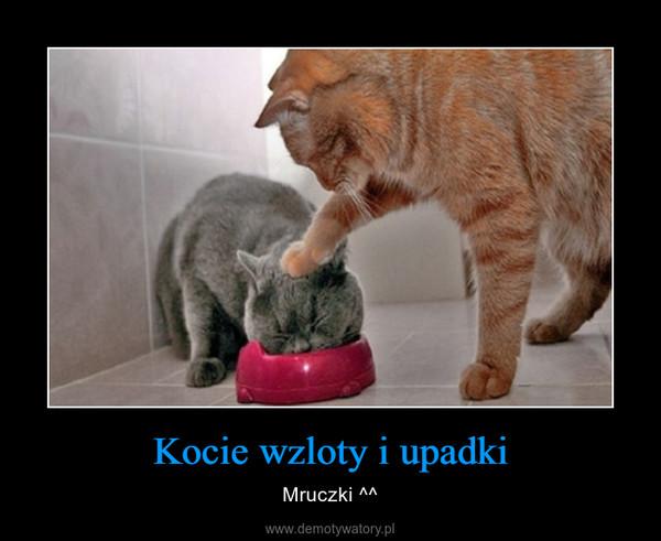 Kocie wzloty i upadki – Mruczki ^^