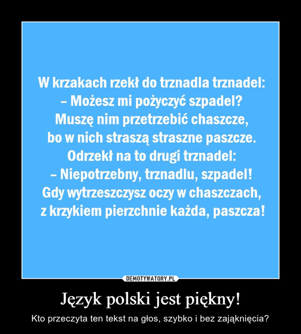 Język polski jest piękny! – Kto przeczyta ten tekst na głos, szybko i bez zająknięcia?