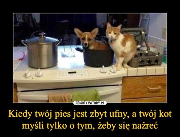 Kiedy twój pies jest zbyt ufny, a twój kot myśli tylko o tym, żeby się nażreć –