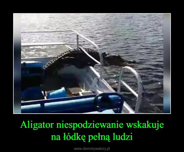 Aligator niespodziewanie wskakujena łódkę pełną ludzi –