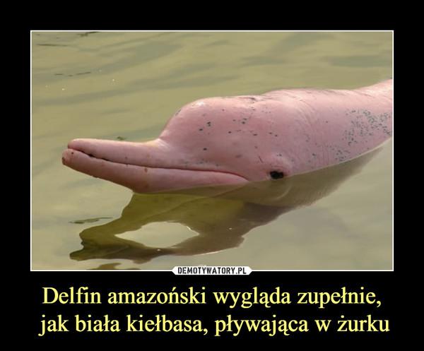 Delfin amazoński wygląda zupełnie, jak biała kiełbasa, pływająca w żurku –