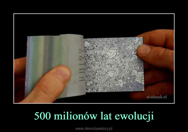 500 milionów lat ewolucji –