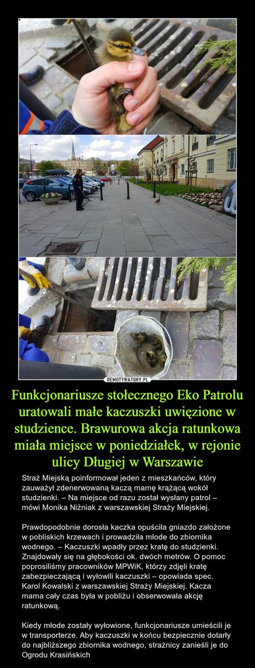 Funkcjonariusze stołecznego Eko Patrolu uratowali małe kaczuszki uwięzione w studzience. Brawurowa akcja ratunkowa miała miejsce w poniedziałek, w rejonie ulicy Długiej w Warszawie