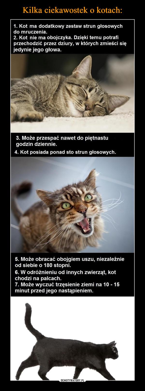 –  1. Kot ma dodatkowy zestaw strun głosowychdo mruczenia.2. Kot nie ma obojczyka. Dzięki temu potrafiprzechodzić przez dziury, w których zmieści sięjedynie jego głowa. 3. Może przespać nawet do piętnastugodzin dziennie.4. Kot posiada ponad sto strun głosowych. 5. Może obracać obojgiem uszu, niezależnieod siebie o 180 stopni.6. W odróżnieniu od innych zwierząt, kotchodzi na palcach.7. Może wyczuć trzęsienie ziemi na 10 -15minut przed jego nastąpieniem.