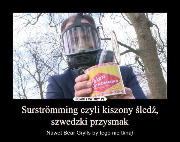 Surströmming czyli kiszony śledź, szwedzki przysmak – Nawet Bear Grylls by tego nie tknął