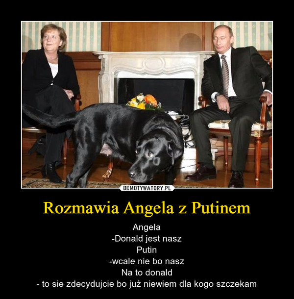 Rozmawia Angela z Putinem – Angela-Donald jest naszPutin-wcale nie bo naszNa to donald- to sie zdecydujcie bo już niewiem dla kogo szczekam