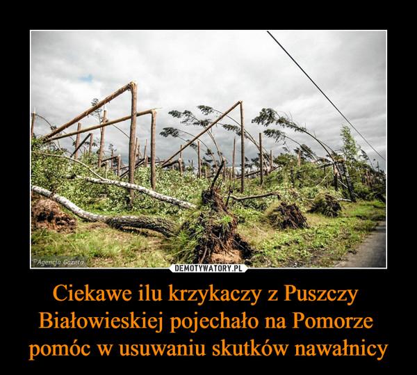 Ciekawe ilu krzykaczy z Puszczy Białowieskiej pojechało na Pomorze pomóc w usuwaniu skutków nawałnicy –