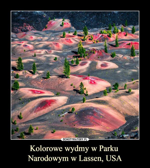 Kolorowe wydmy w Parku Narodowym w Lassen, USA –