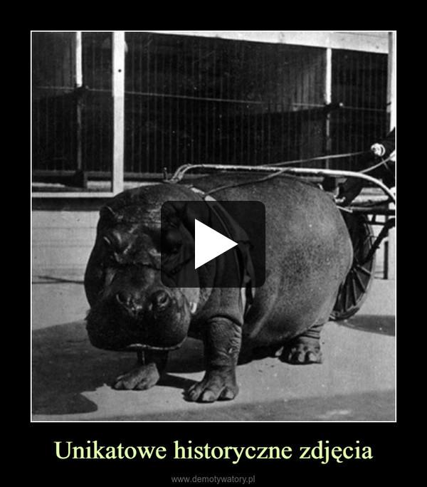 Unikatowe historyczne zdjęcia –