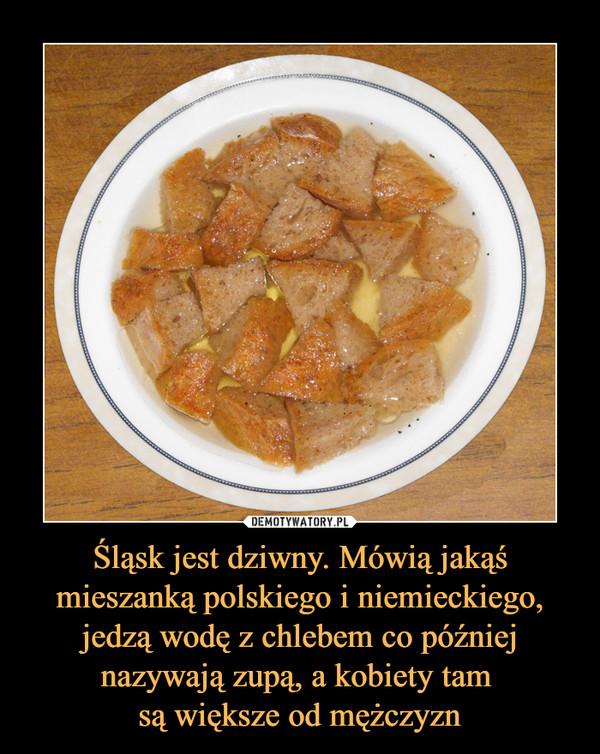 Śląsk jest dziwny. Mówią jakąś mieszanką polskiego i niemieckiego, jedzą wodę z chlebem co później nazywają zupą, a kobiety tam są większe od mężczyzn –