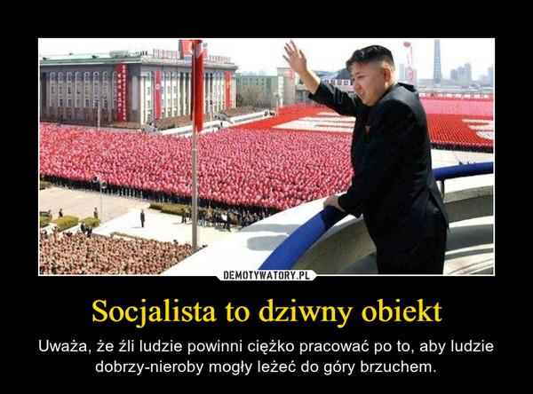 Socjalista to dziwny obiekt – Uważa, że źli ludzie powinni ciężko pracować po to, aby ludzie dobrzy-nieroby mogły leżeć do góry brzuchem.
