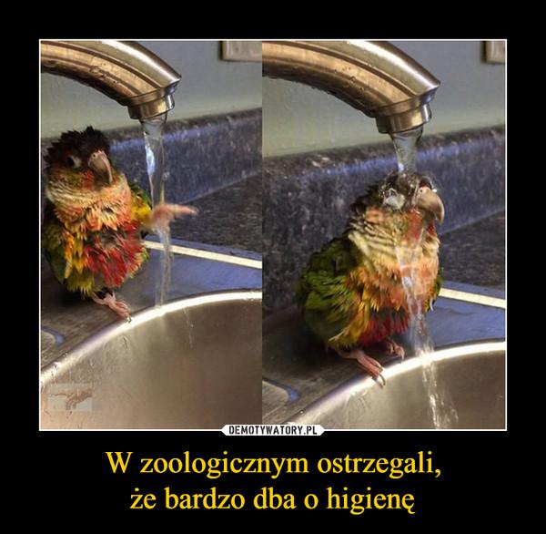 W zoologicznym ostrzegali,że bardzo dba o higienę –