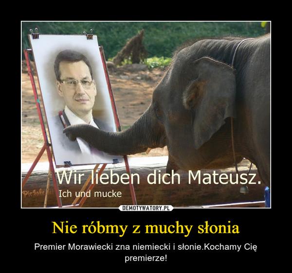 Nie róbmy z muchy słonia – Premier Morawiecki zna niemiecki i słonie.Kochamy Cię premierze!