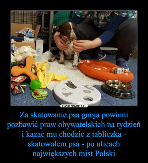 Za skatowanie psa gnoja powinni pozbawić praw obywatelskich na tydzień i kazac mu chodzic z tabliczka - skatowałem psa - po ulicach największych mist Polski –