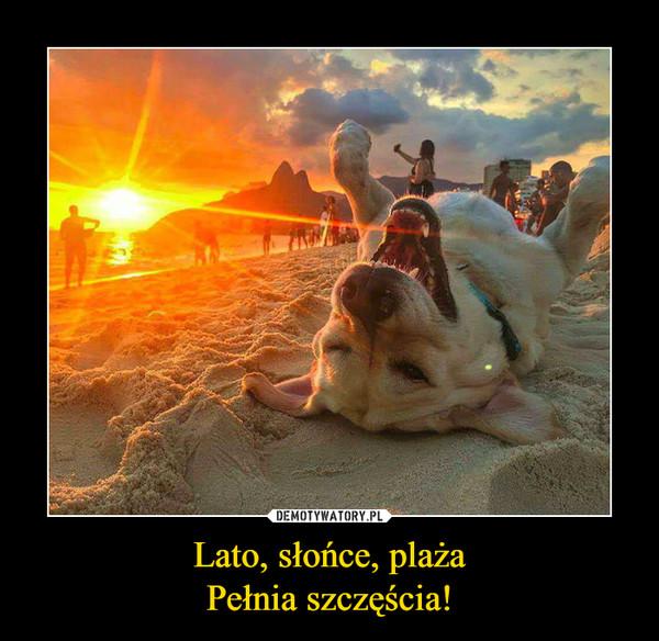 Lato, słońce, plażaPełnia szczęścia! –