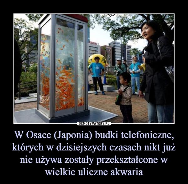 W Osace (Japonia) budki telefoniczne, których w dzisiejszych czasach nikt już nie używa zostały przekształcone w wielkie uliczne akwaria –