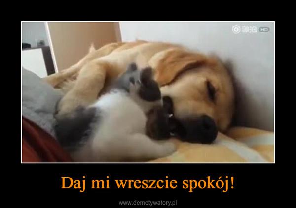 Daj mi wreszcie spokój! –