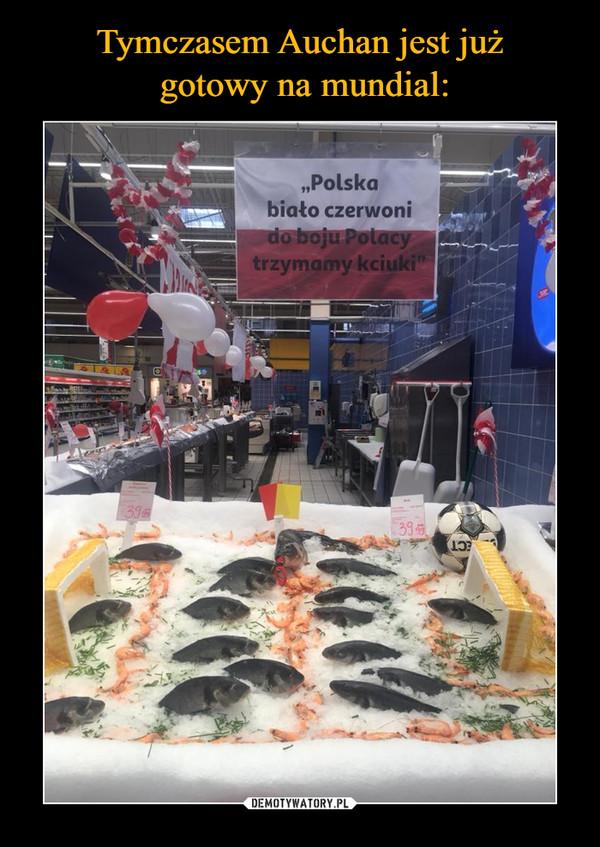 –  Polska biało czerwoni do boju Polacy trzymamy kciuki