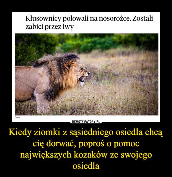 Kiedy ziomki z sąsiedniego osiedla chcą cię dorwać, poproś o pomoc największych kozaków ze swojego osiedla –  Kłusownicy polowali na nosorożce. Zostali zabici przez lwy