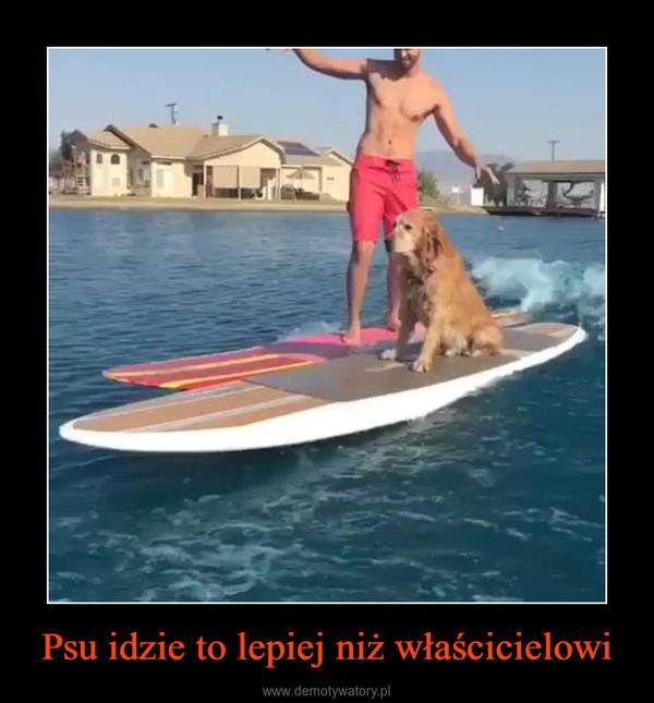 Psu idzie to lepiej niż właścicielowi –