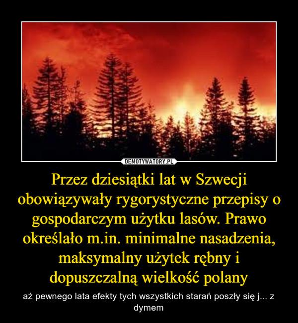 Przez dziesiątki lat w Szwecji obowiązywały rygorystyczne przepisy o gospodarczym użytku lasów. Prawo określało m.in. minimalne nasadzenia, maksymalny użytek rębny i dopuszczalną wielkość polany – aż pewnego lata efekty tych wszystkich starań poszły się j... z dymem