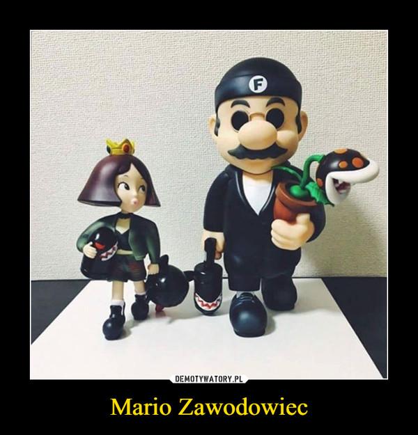 Mario Zawodowiec –