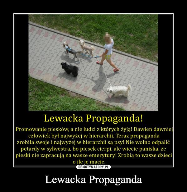 Lewacka Propaganda –