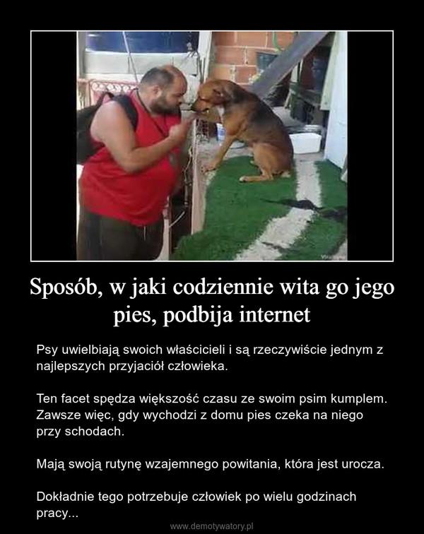 Sposób, w jaki codziennie wita go jego pies, podbija internet – Psy uwielbiają swoich właścicieli i są rzeczywiście jednym z najlepszych przyjaciół człowieka.Ten facet spędza większość czasu ze swoim psim kumplem. Zawsze więc, gdy wychodzi z domu pies czeka na niego przy schodach. Mają swoją rutynę wzajemnego powitania, która jest urocza.Dokładnie tego potrzebuje człowiek po wielu godzinach pracy...