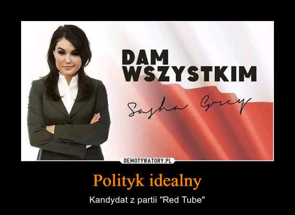 "Polityk idealny – Kandydat z partii ""Red Tube"""