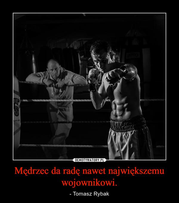 Mędrzec da radę nawet największemu wojownikowi. – - Tomasz Rybak