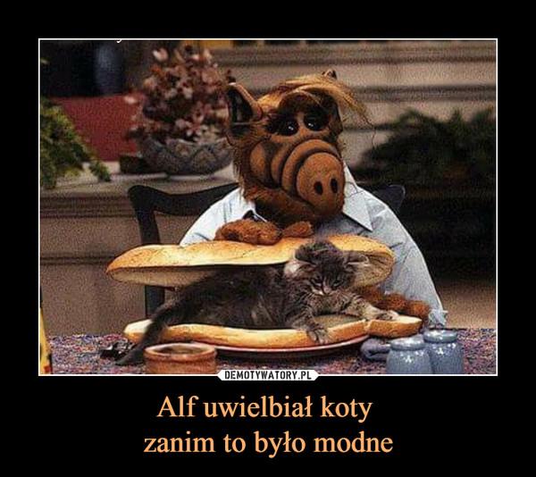 Alf uwielbiał koty zanim to było modne –