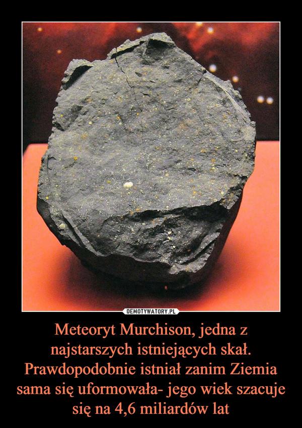 Meteoryt Murchison, jedna z najstarszych istniejących skał. Prawdopodobnie istniał zanim Ziemia sama się uformowała- jego wiek szacuje się na 4,6 miliardów lat –