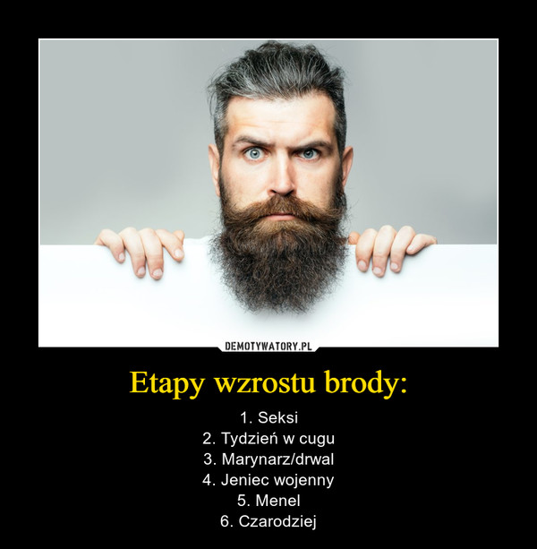 Etapy wzrostu brody: – 1. Seksi2. Tydzień w cugu3. Marynarz/drwal4. Jeniec wojenny5. Menel6. Czarodziej