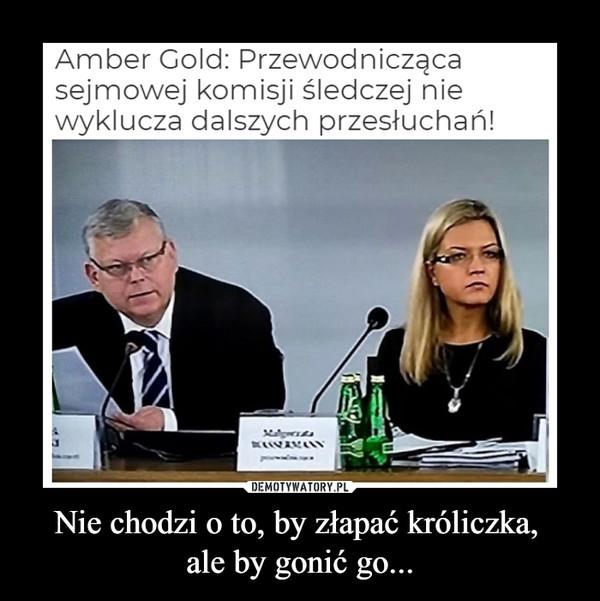 Nie chodzi o to, by złapać króliczka, ale by gonić go... –  Amber Gołd: Przewodnicząca sejmowej komisji śledczej nie wyklucza dalszych przesłuchań!