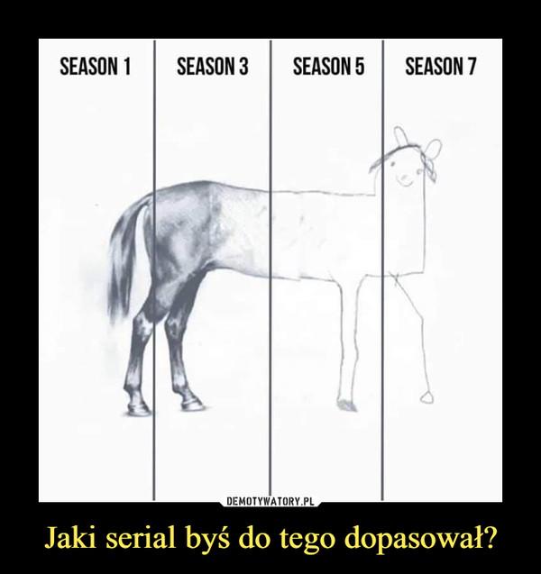 Jaki serial byś do tego dopasował? –