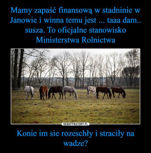 Mamy zapaść finansową w stadninie w Janowie i winna temu jest ... taaa dam.. susza. To oficjalne stanowisko Ministerstwa Rolnictwa Konie im sie rozeschły i straciły na wadze?