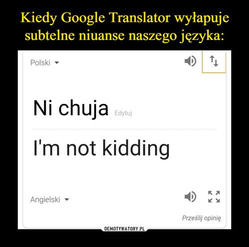 Kiedy Google Translator wyłapuje subtelne niuanse naszego języka: