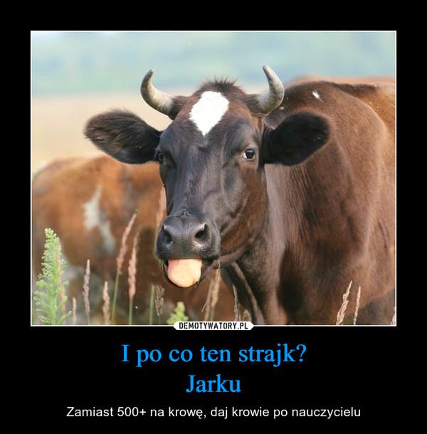 I po co ten strajk?Jarku – Zamiast 500+ na krowę, daj krowie po nauczycielu