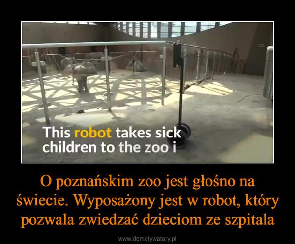O poznańskim zoo jest głośno na świecie. Wyposażony jest w robot, który pozwala zwiedzać dzieciom ze szpitala –