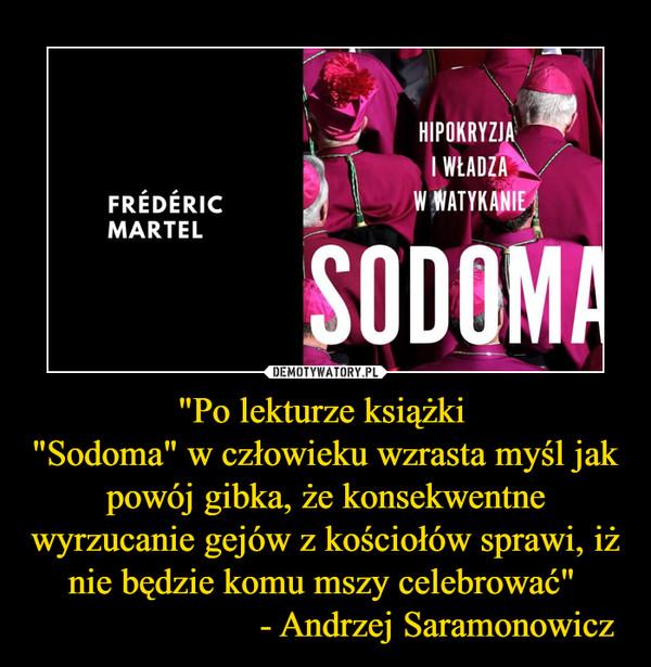 """""""Po lekturze książki """"Sodoma"""" w człowieku wzrasta myśl jak powój gibka, że konsekwentne wyrzucanie gejów z kościołów sprawi, iż nie będzie komu mszy celebrować""""                         - Andrzej Saramonowicz –"""