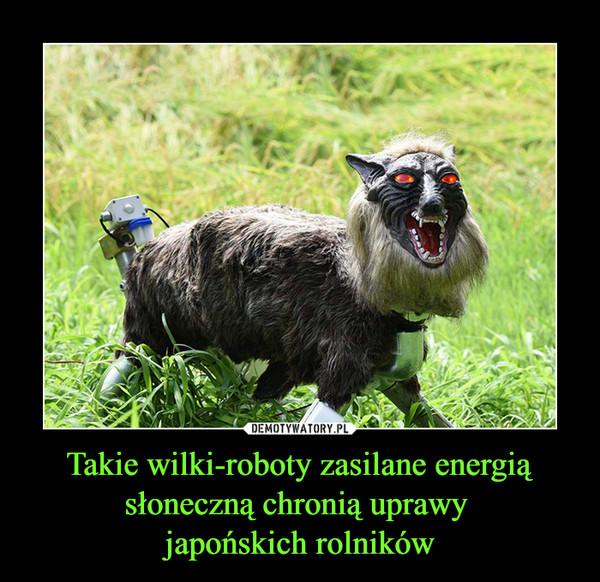Takie wilki-roboty zasilane energią słoneczną chronią uprawy japońskich rolników –