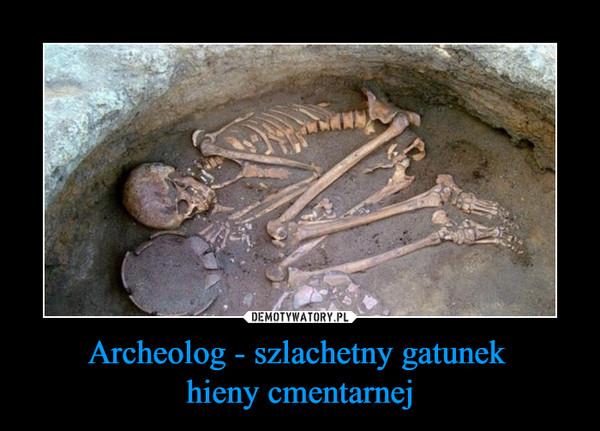 Archeolog - szlachetny gatunek hieny cmentarnej –