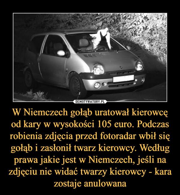 W Niemczech gołąb uratował kierowcę od kary w wysokości 105 euro. Podczas robienia zdjęcia przed fotoradar wbił się gołąb i zasłonił twarz kierowcy. Według prawa jakie jest w Niemczech, jeśli na zdjęciu nie widać twarzy kierowcy - kara zostaje anulowana –