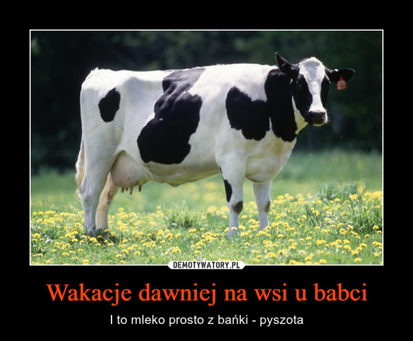 Wakacje dawniej na wsi u babci – I to mleko prosto z bańki - pyszota