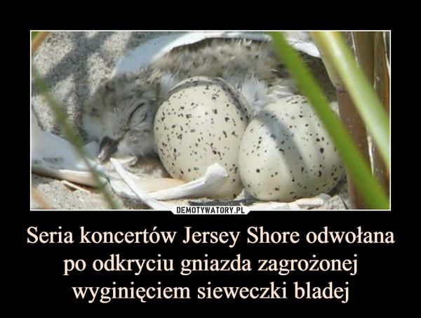Seria koncertów Jersey Shore odwołana po odkryciu gniazda zagrożonej wyginięciem sieweczki bladej –